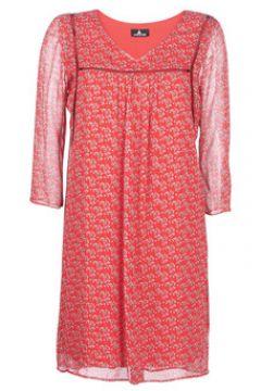 Robe One Step ROSIE(88619547)