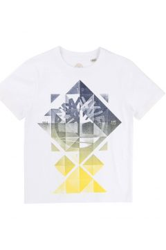 T-Shirt aus Bio-Baumwolle(113872073)