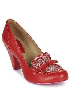 Chaussures escarpins Cristofoli CALICOU(88429211)