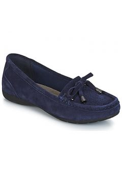 Chaussures Wildflower DINA(115408529)