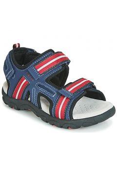 Sandales enfant Geox JR SANDAL STRADA(115407417)