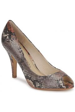 Chaussures escarpins Chinese Laundry COUNT DOWN(115445762)