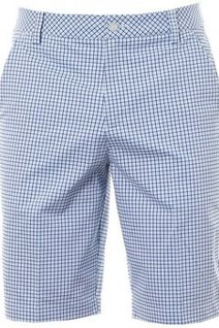 Short Puma Plaid Short Omphalodes Light blue(115483658)