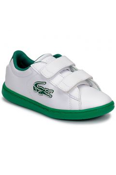 Chaussures enfant Lacoste CARNABY EVO 319 1 SUI(127906313)