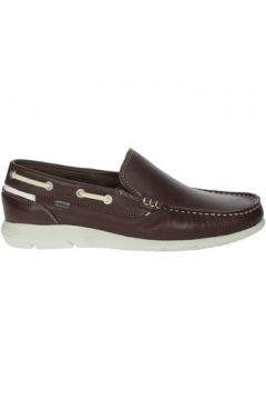 Chaussures Baerchi 7951(115571997)