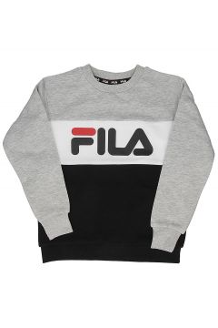 Fila Night Blocked Crew Sweater grijs(100365643)