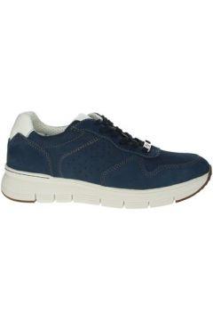 Chaussures Valleverde 17852(115572230)