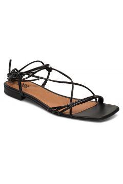 Pisa Sandals Flache Sandalen Schwarz TWIST & TANGO(114160392)