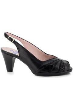 Chaussures escarpins Carlos Pla 4125(88598592)