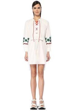 Miu Kadın Beyaz Yakası Bağcıklı Nakışlı Mini Poplin Elbise 38 IT(109148701)