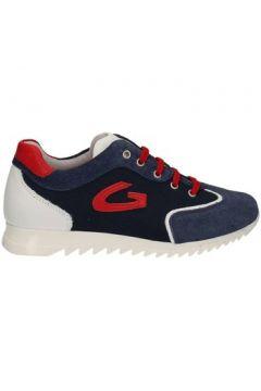 Chaussures enfant Alberto Guardiani GK23343(115637674)