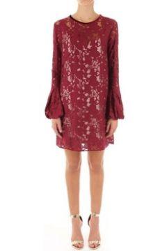 Robe Denny Rose 821DD10032(115593907)
