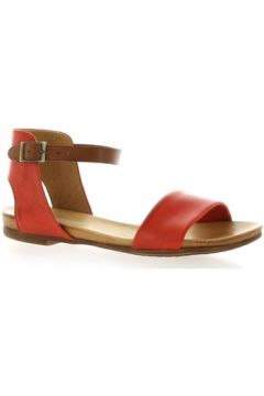 Sandales Creator Creat Nu pieds cuir(127923921)
