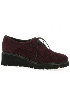 Chaussures Mitica Derby cuir velours bdeaux(127866400)