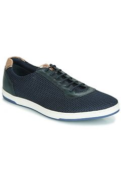 Chaussures Base London HUSTLE MESH(115408706)
