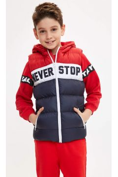 DeFacto Erkek Çocuk Renk Bloklu Baskılı Şişme Yelek(119063397)