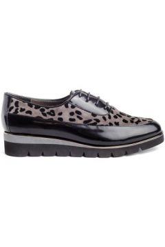 Chaussures Stephen Allen 1133-401(127987604)