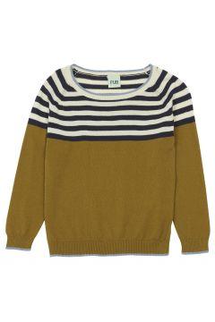 Pullover aus Bio-Baumwolle(117294571)
