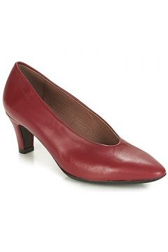 Chaussures escarpins Wonders NAR(115401422)