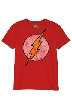 T-shirt enfant Cotton Division T-shirt Enfant DC Comics - Flash Logo Grunge(101554191)