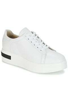 Chaussures Sweet Lemon BISTRO(115391376)