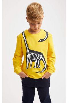 DeFacto Erkek Çocuk Dinozor Baskılı Fermuar Detaylı Sweatshirt(125926916)