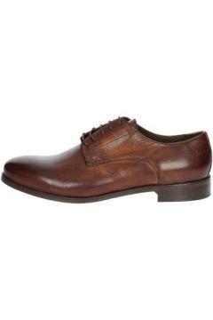 Chaussures Veni T0007(127911640)