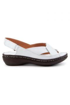 İloz 240204 Kadın Sandalet(113620214)