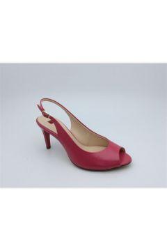 Chaussures escarpins Högl 1-107103(115500525)