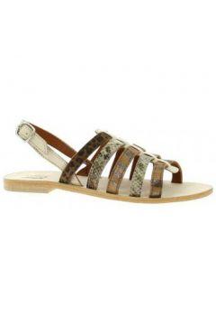 Sandales Ambiance Nu pieds cuir(98529098)