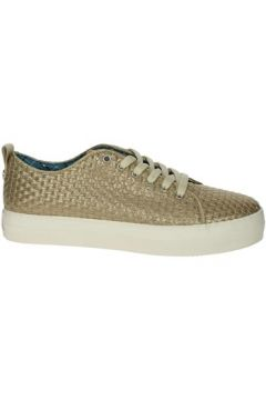 Chaussures U.S Polo Assn. TRIXY4021S9/Y1(115572149)