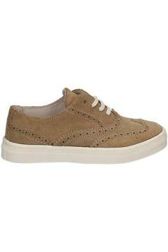 Chaussures enfant Didiblu D-3523(115643605)
