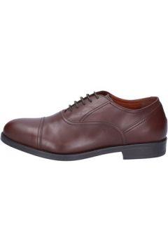 Chaussures Triver Flight élégantes marron cuir BX558(115442582)