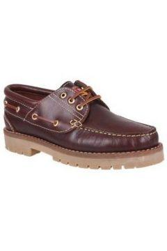 Chaussures Molina 20400(98455954)