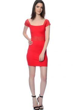 Wyldr Kalem Mini Elbise(113948797)