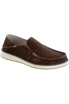 Chaussures Birkenstock Chaussures De Ville Homme Duma(115634670)
