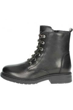 Boots Arlee Mod L288(101564658)