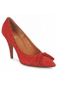 Chaussures escarpins Michel Perry CAMOSCIO(98767953)