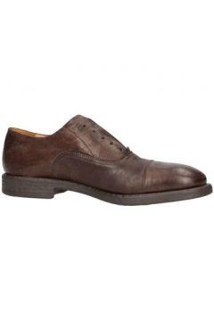 Chaussures Soldini 19944-o-u63(115594494)