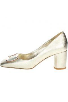 Chaussures escarpins Angela C. 8634(115570436)