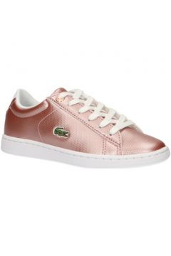 Chaussures enfant Lacoste 37SUC0002 CARNABY(101628773)