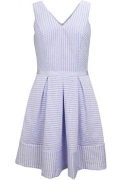 Robe Tommy Hilfiger Robe Elana bleue pour femme(115387590)