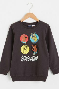 Çocuk Erkek Çocuk Scooby Doo Baskılı Sweatshirt(125084224)