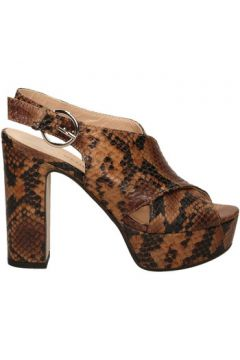 Chaussures escarpins Les Venues LINDY(127924026)