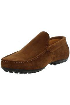 Chaussures Baxton Mocassins ref_bom43395-marron(88519536)