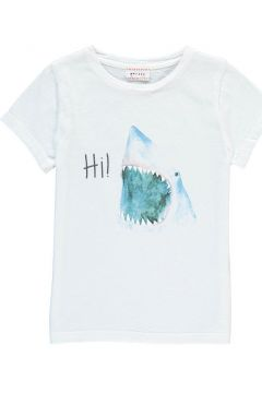 T-Shirt Hai Flip(113612078)