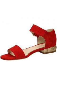 Sandales Todai -(127941810)