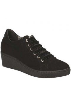 Chaussures Grunland SC3524(115663463)