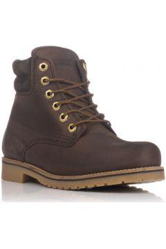 Boots Coronel Tapioca 465(115447312)