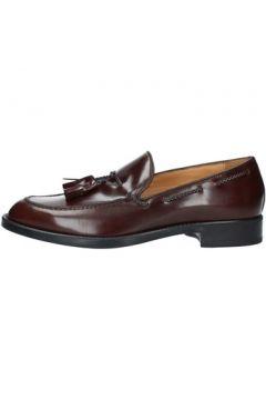 Chaussures Antica Cuoieria 20143(98490718)